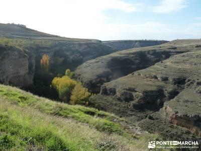 Hoces del Río Duratón - Villa y Tierra de Sepúlveda;reto senderismo